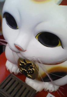 ヒノマル食堂に住む招き猫のブログ-ヒノ